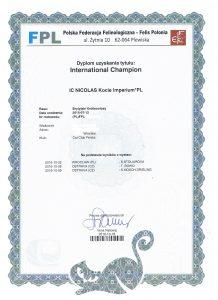international-nicolas